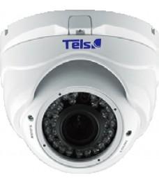 TELS IP-D2136V